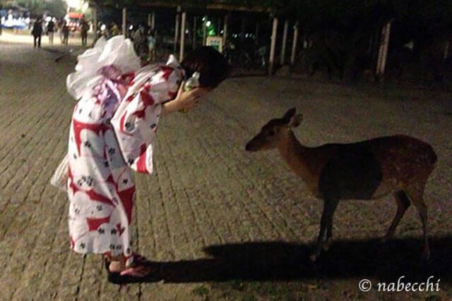 浴衣女性と鹿 夜の奈良公園