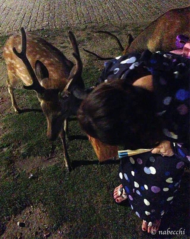 浴衣女性と鹿