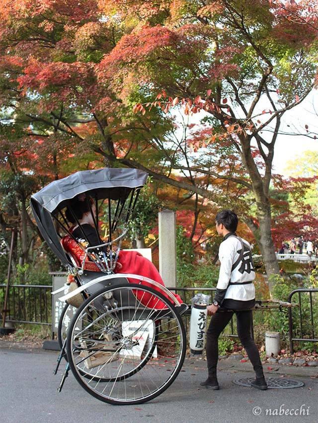 京都 舞妓さんに人力車
