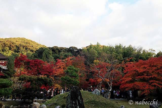 紅葉 高台寺