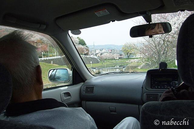 桜を見ながらドライブ