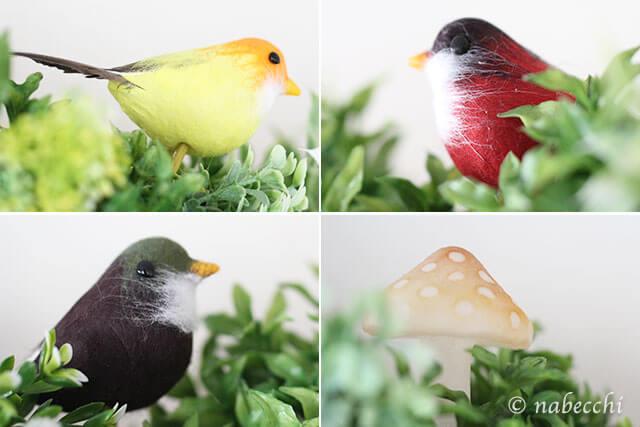 3coinsの小鳥たち