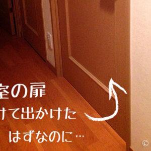ルンバ870 ホームベースに戻らない。寝室の扉対策