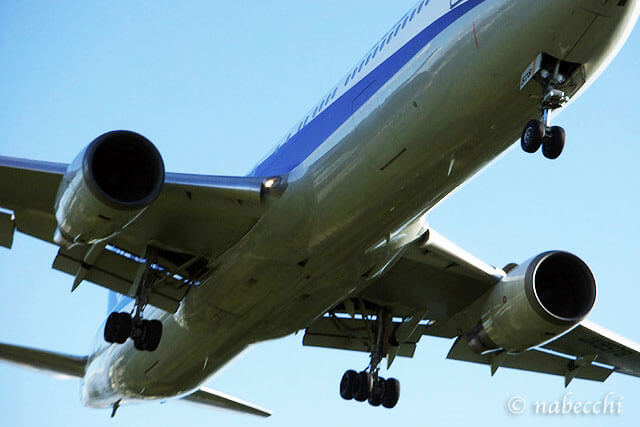 真下から飛行機着陸を眺める