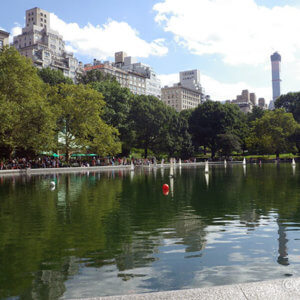 『NYセントラル・パーク』都会の中でリスが駆け回る癒やしスポット
