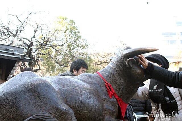 湯島天神 撫で牛