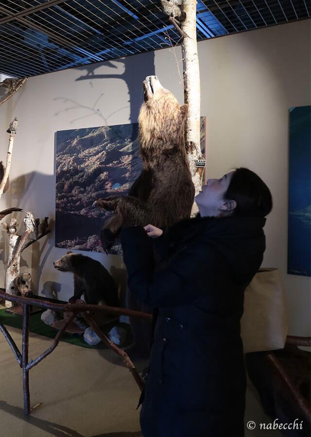 クマと背比べ のぼりべつクマ牧場
