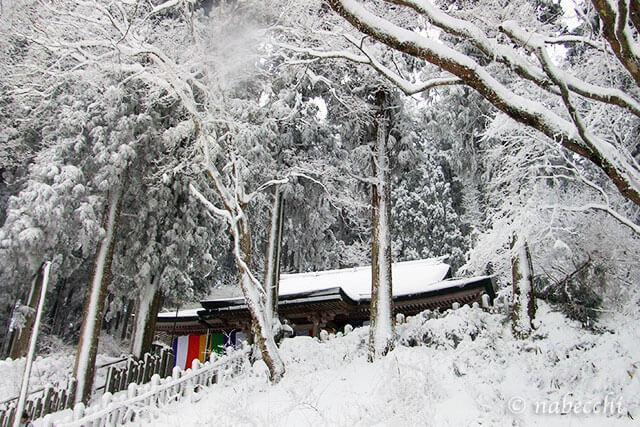 大雪 金剛山葛木神社