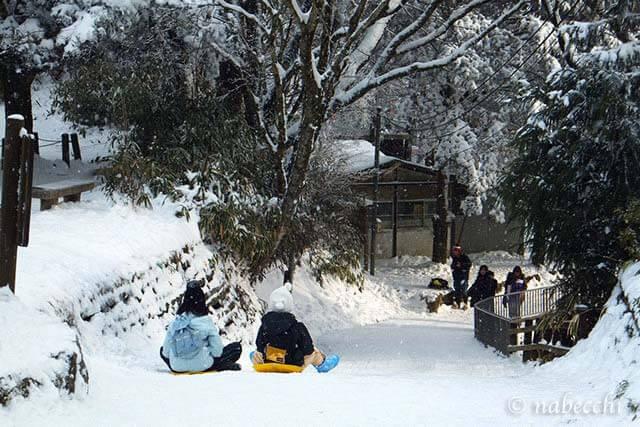 金剛山 ソリで遊ぶ子供達