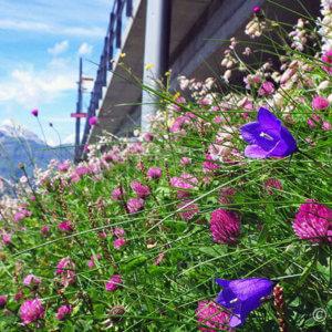 ツェルマットで花火!賑やかスイス建国記念日 -スイス旅行6日目