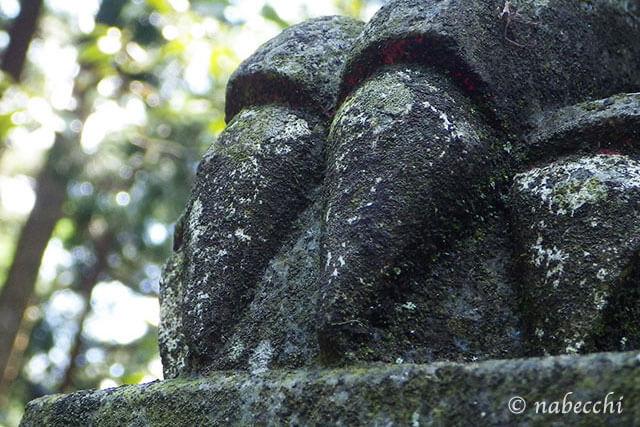 金剛山 獅子爪