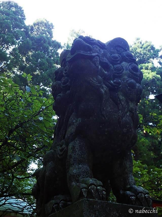 金剛山 獅子