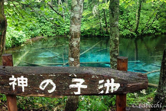 北海道 神の子池