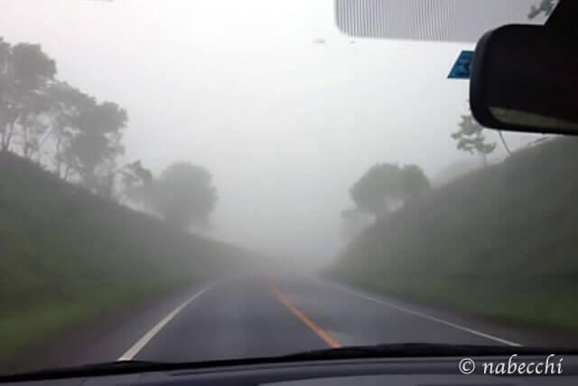 霧のドライブ