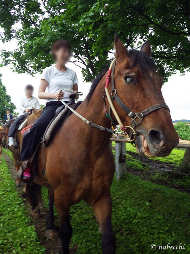 川湯パーク牧場 乗馬体験