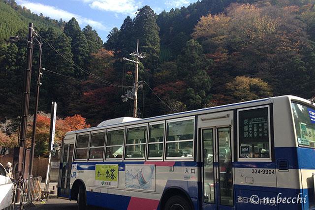 紅葉する京都高雄 バス