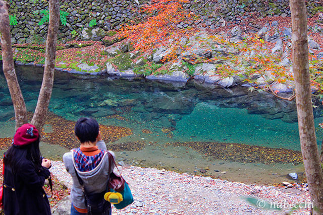 紅葉する透明度の高い川 槙尾山 西明寺