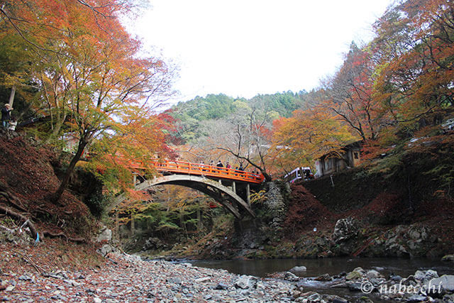 紅葉と橋 槙尾山 西明寺
