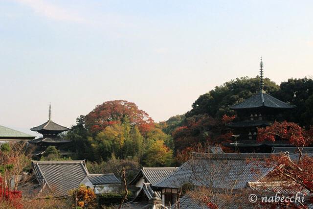當麻寺からの眺め