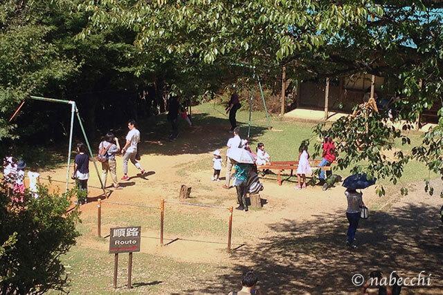 嵐山モンキーパーク 遊び場