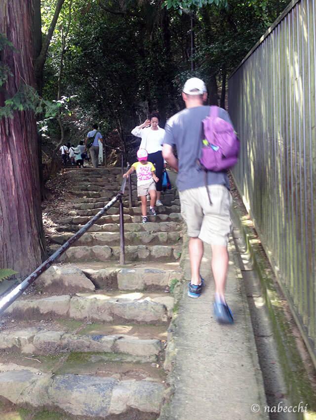 嵐山モンキーパーク 登り坂