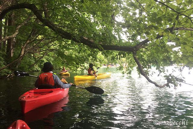 青木湖カヤック体験で木々の中をくぐり抜ける