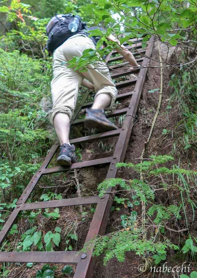 焼岳登山道 ハシゴに登る