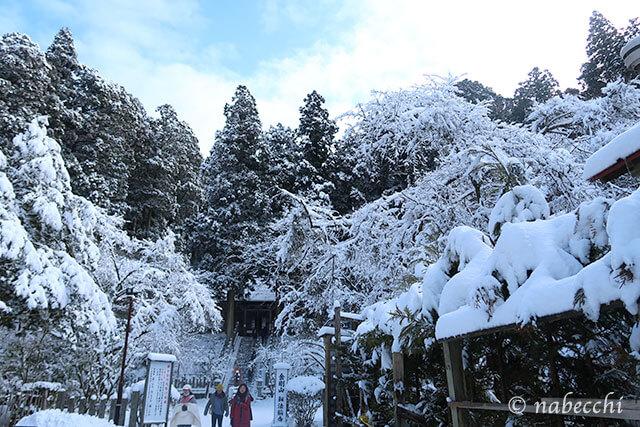 雪が積もる1月の金剛山